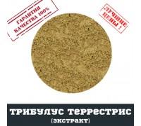 Трибулус террестрис 90% экстракт, 100г