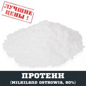 Концентрат сывороточного протеина (Milkiland Ostrowia Польша), 80%, 1 кг